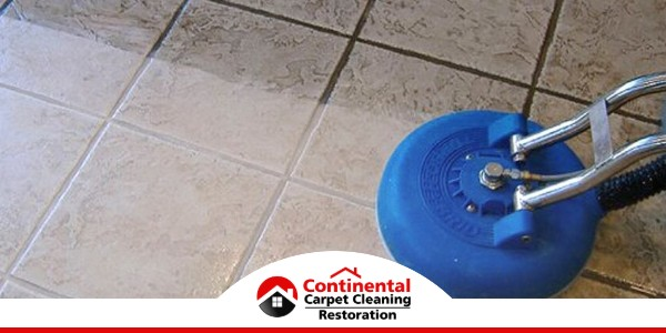 Carpet Cleaning in Richland, WA (2500)