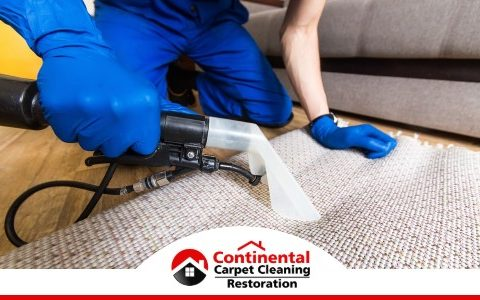 Carpet Cleaning 182
