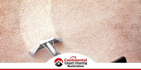 Carpet Cleaning in Pasco, WA (8578)