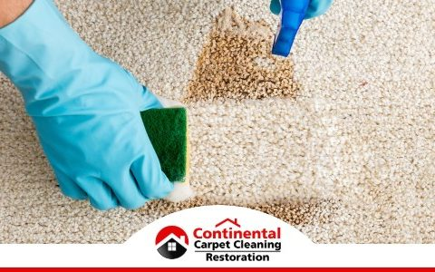 Carpet Cleaning in Kennewick, WA