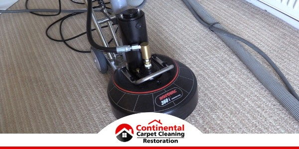 Carpet Cleaning in West Richland, WA (6877)