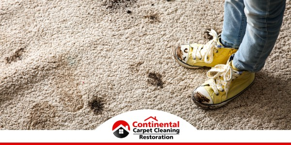 Carpet Cleaning in Finley, WA (1204)